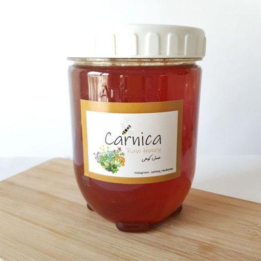 عسل کوهی (عسل وحشی)فروشگاه کارنیکا