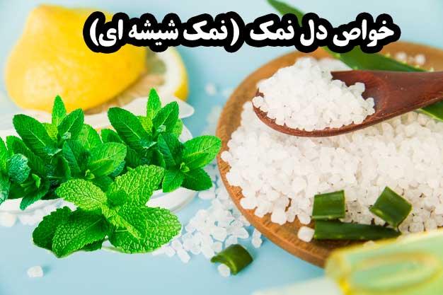 خواص دل نمک (نمک شیشه ای) - سایت کارنیکا