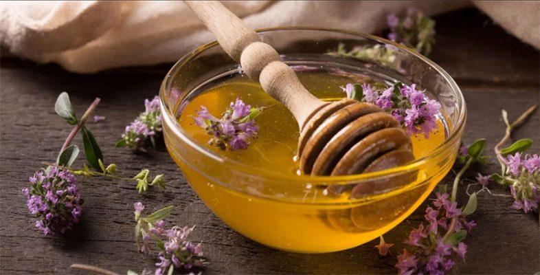 درمان سوختگی با عسل سایت کارنیکا
